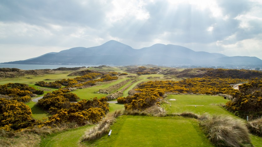 Interview david wilson secretary at royal county down for Royal county down